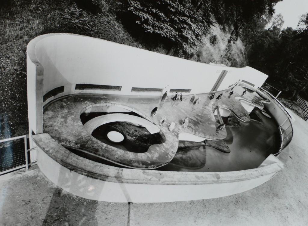 Penguin Pool CC47:586