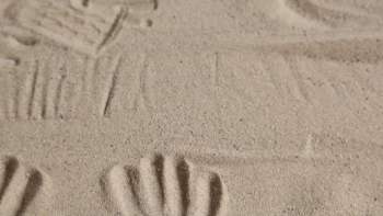 David Poole sand